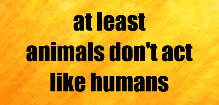 Animals – Humans